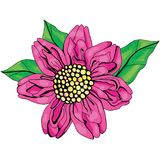 Bello disegno rosa della fioritura del fiore illustrazione vettoriale