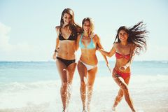 Bello divertimento delle ragazze alla spiaggia fotografia stock