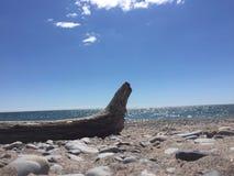 Bello e giorno soleggiato alla spiaggia Immagini Stock