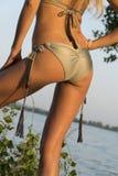 Bello ente di una ragazza in bikini con il lago di estate Fotografia Stock Libera da Diritti