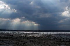 Bello estuario salato Fotografia Stock Libera da Diritti