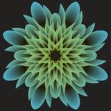 Bello fiore astratto su un fondo scuro Immagini Stock Libere da Diritti