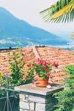 Bello fiore conservato in vaso rosso, tetto di mattonelle ed altri dettagli nel cantone alpino rurale del Ticino in Svizzera del  Immagini Stock Libere da Diritti