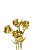 Bello fiore dorato illustrazione di stock