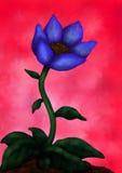 Bello fiore 1 (flower power, 2016) Fotografie Stock Libere da Diritti