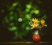 Bello fiore giallo in vaso sulla tavola Fotografie Stock