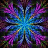 Bello fiore multicolore di frattale Raccolta - modello gelido illustrazione vettoriale