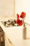 Bello fiore sulla tabella in cucina moderna Immagine Stock Libera da Diritti