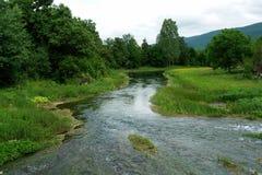 Bello fiume Immagini Stock Libere da Diritti
