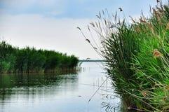 Bello fiume calmo Immagine Stock