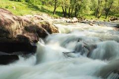 Bello fiume con le pietre, gli alberi e l'erba Fotografie Stock Libere da Diritti