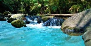 Bello fiume dell'acqua blu nella foresta fotografia stock