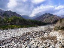 Bello fiume della montagna Immagini Stock Libere da Diritti