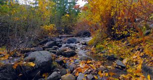 Bello fiume di Wenatchee - di Washington Autumn Nature Scenery fotografia stock libera da diritti