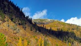 Bello fiume di Wenatchee - di Washington Autumn Nature Scenery fotografie stock