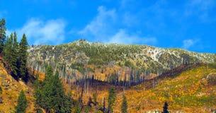 Bello fiume di Wenatchee - di Washington Autumn Nature Scenery fotografia stock libera da diritti