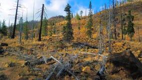 Bello fiume di Wenatchee - di Washington Autumn Nature Scenery fotografie stock libere da diritti