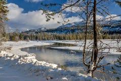 Bello fiume nell'inverno con neve e la foresta immagini stock