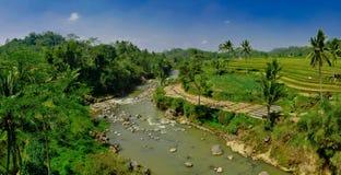 Bello fiume tropicale Fotografie Stock