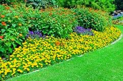 flowerbed nel parco di estate immagini stock