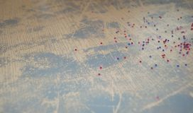 Bello fondo d'annata con le perle Fotografie Stock Libere da Diritti