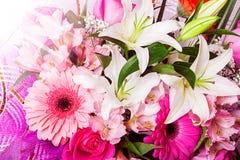Bello fondo del fiore. Fotografia Stock Libera da Diritti