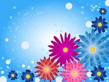 Bello fondo del fiore Immagine Stock