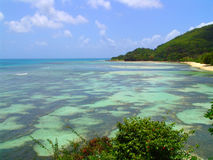 Bello fondo dell'oceano e paesaggio in Seychelle Fotografie Stock