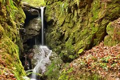 Bello fondo della natura con primavera della foresta e della corrente in natura fotografia stock libera da diritti