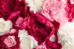 Bello fondo della parete dei fiori Immagini Stock Libere da Diritti