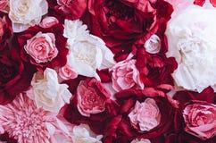 Bello fondo della parete dei fiori Fotografia Stock Libera da Diritti