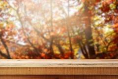 Bello fondo di legno della foresta di autunno della sfuocatura e della tavola Fotografie Stock Libere da Diritti