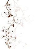 Bello, fondo floreale Immagine Stock