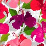 Bello fondo floreale senza cuciture del modello della giungla Fondo luminoso di colore dei fiori tropicali Fiore dell'ibisco real illustrazione vettoriale