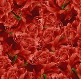 Bello fondo rosso floreale d'annata Composizione nel fiore Mazzo dei fiori dalle rose rosse Primo piano Immagini Stock Libere da Diritti