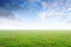 Bello fondo semplice con erba verde e cielo blu fotografia stock