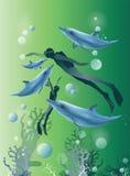 Bello fondo verde con nuoto ed i delfini dell'operatore subacqueo Fotografia Stock