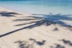 Bello frammento della laguna con la chiara ombra blu della palma e del mare Fotografie Stock Libere da Diritti