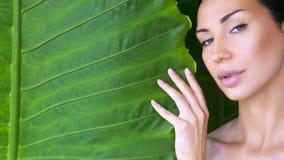 Bello fronte della donna con trucco nudo naturale su una prateria tropicale fotografie stock