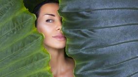Bello fronte della donna con trucco nudo naturale su una prateria tropicale fotografie stock libere da diritti
