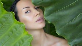 Bello fronte della donna con trucco nudo naturale su una prateria tropicale fotografia stock libera da diritti