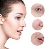 Bello fronte della giovane donna con le grinze dello zoom Fotografia Stock