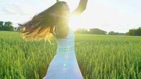 Bello funzionamento della ragazza divertendosi sul giacimento di grano nel tramonto Libertà, salute, concetto di felicità Giovane archivi video