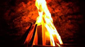 Bello fuoco video d archivio