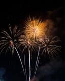 Bello fuoco d'artificio sul cielo alla notte Fotografie Stock Libere da Diritti