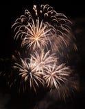 Bello fuoco d'artificio sul cielo alla notte Fotografie Stock
