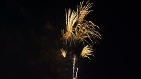 Bello fuoco d'artificio variopinto celebrazione stock footage