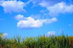 Bello galleggiante delle nuvole sopra l'erba Fotografia Stock Libera da Diritti
