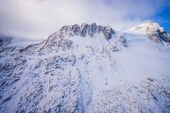 Bello ghiacciaio vicino a Queenstown, Josef Glacier National Park, in Nuova Zelanda nelle alpi australiane Fotografie Stock
