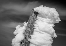 Bello ghiaccio tagliente su legno immagine stock libera da diritti
